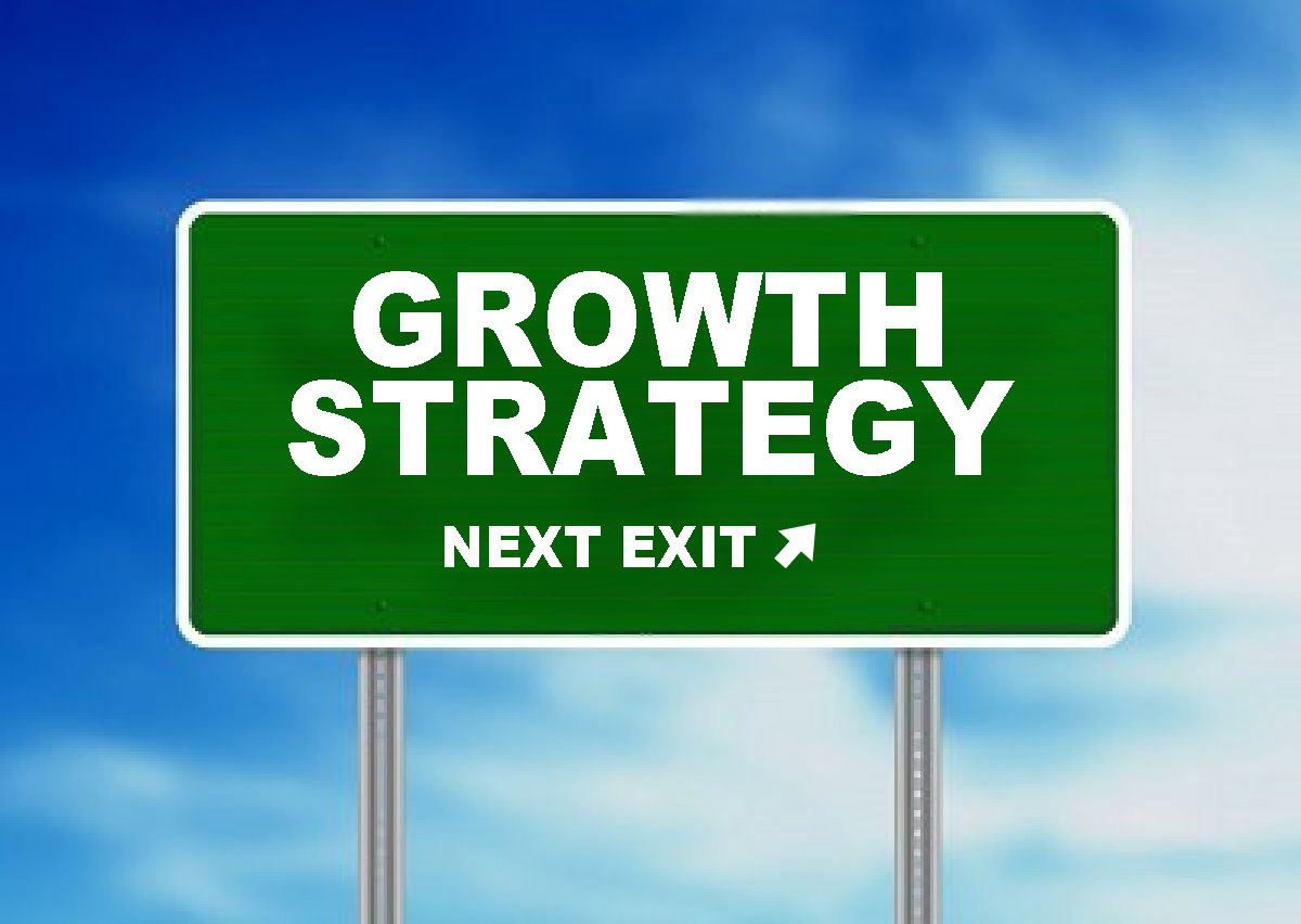 Strategies of internal growth and external growth
